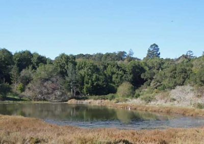 Norton Pond